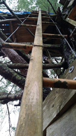 tree house ladder