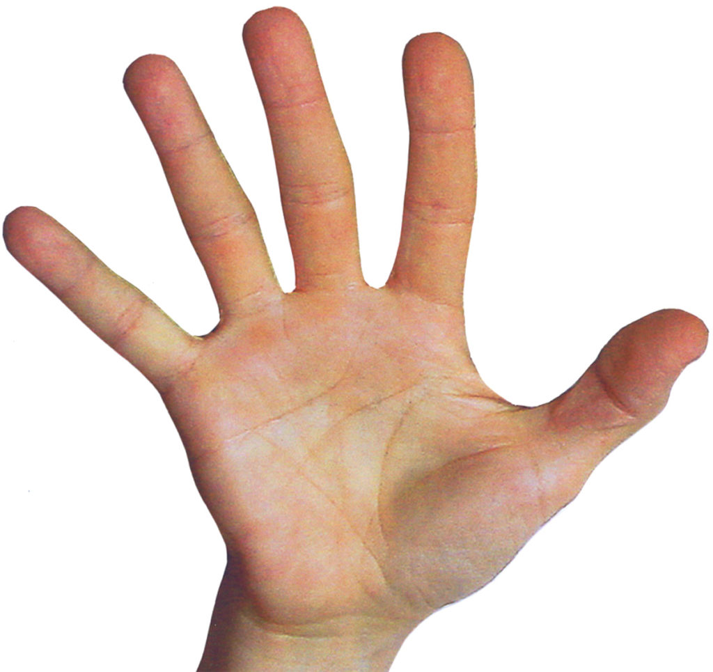 Mark Seltman's Real Palmistry Blog - Hold Up Your HandsMark